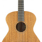Breedlove USA Concert Day Light E