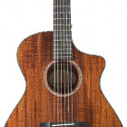 Breedlove 2018 Pursuit Exotic Concert CE (Koa)