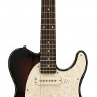 Tribute ASAT Special Semi-Hollow