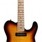Tribute ASAT Special Deluxe Carved Top