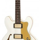 Epiphone Limited Editon Dot Royale