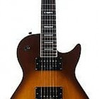 Washburn WMI STD