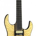 B.C. Rich Exotic Classic Assassin