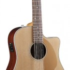 Fender Villager™ 12 String