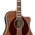 Fender Jimmy Dale Signature Kingman™ SCE