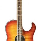 Acoustic Look 12 String Bass