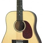 Herringbone 12-String Acoustic