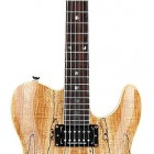 Special Edition Custom Telecaster Spalted Maple HH