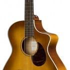 Breedlove Passport Plus C250