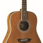 Washburn WSJ 124K