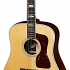 Gibson Traveling Songwriter Ec Review